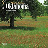 Oklahoma, Wild & Scenic 2017 - 7inch x 7inch USA Hanging Mini Square Wall Photographic America State Planner Calendar