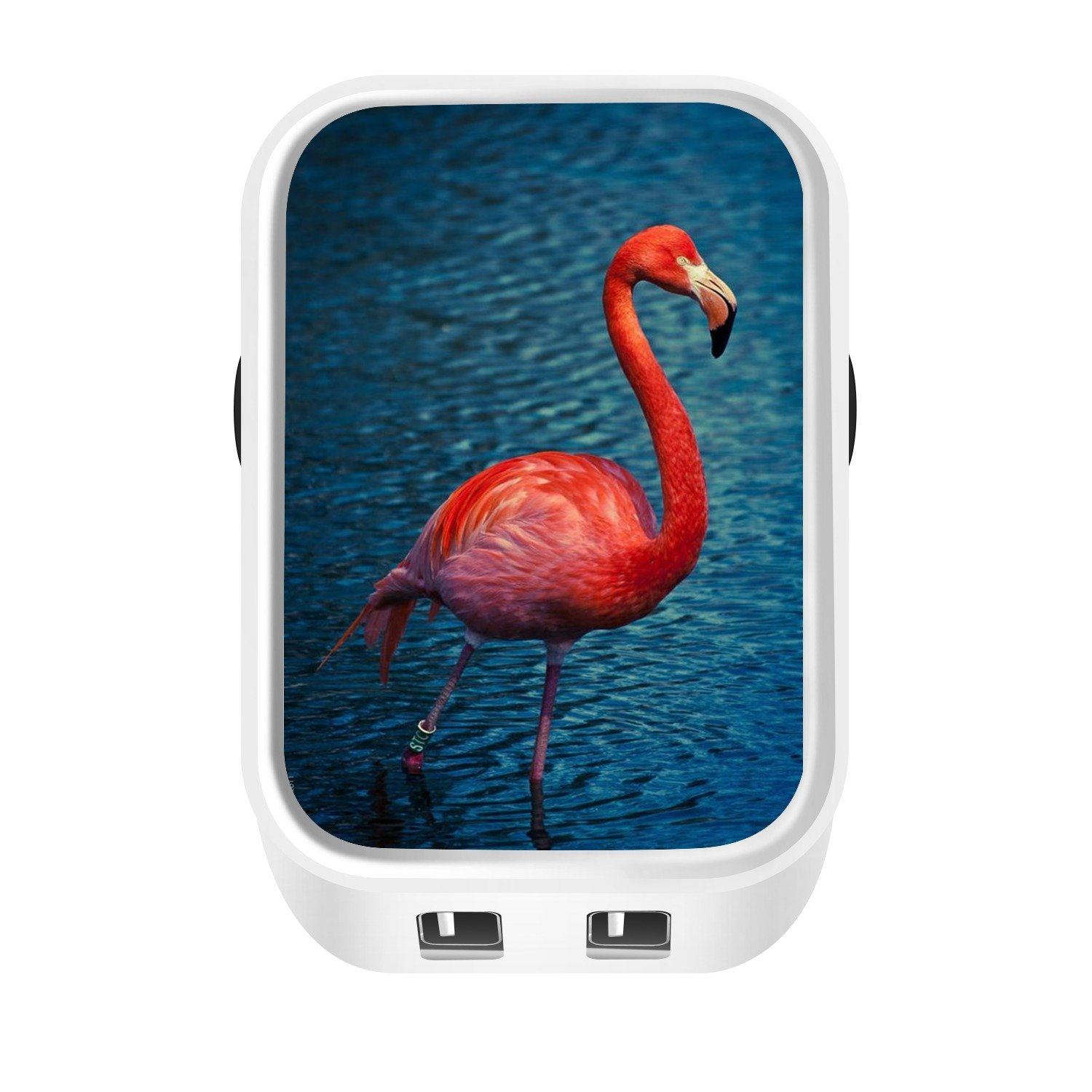 Flamingo Pattern Dual USB Speedy 5V//3.1A Mobile Charger Plug Adapter Customized for iPad LG and HTC Google Nexus iPhone Travel Wall Charger Samsung Galaxy