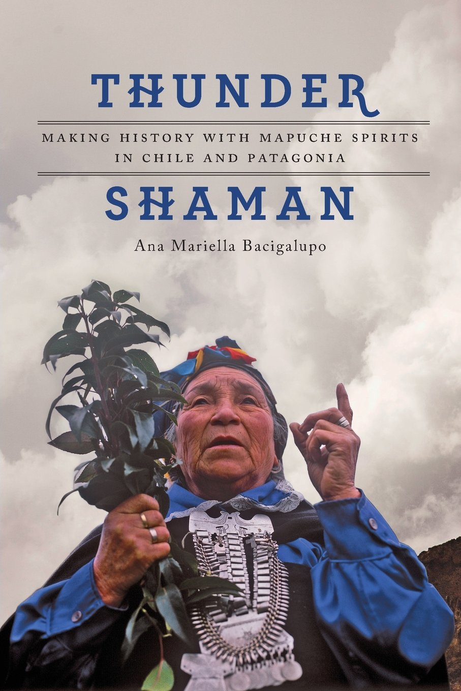 Download Thunder Shaman: Making History with Mapuche Spirits in Chile and Patagonia pdf