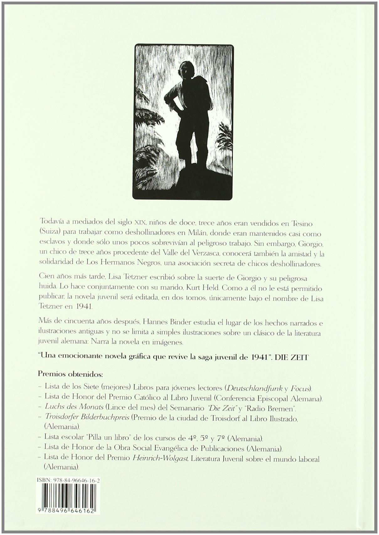 Los Hermanos Negros/ The Black Brothers: Novela Grafica (Spanish Edition): Hannes Binder, Lisa Tetzner: 9788496646162: Amazon.com: Books