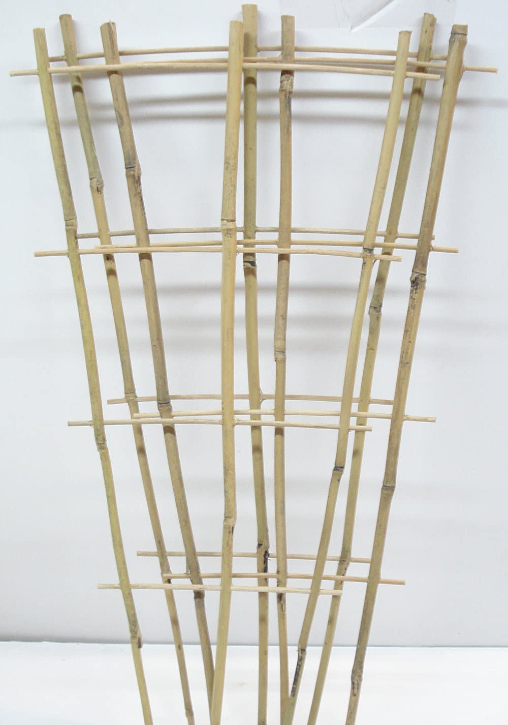 Natural Color Bamboo Trellis 24 inches Tall - Quantity 3