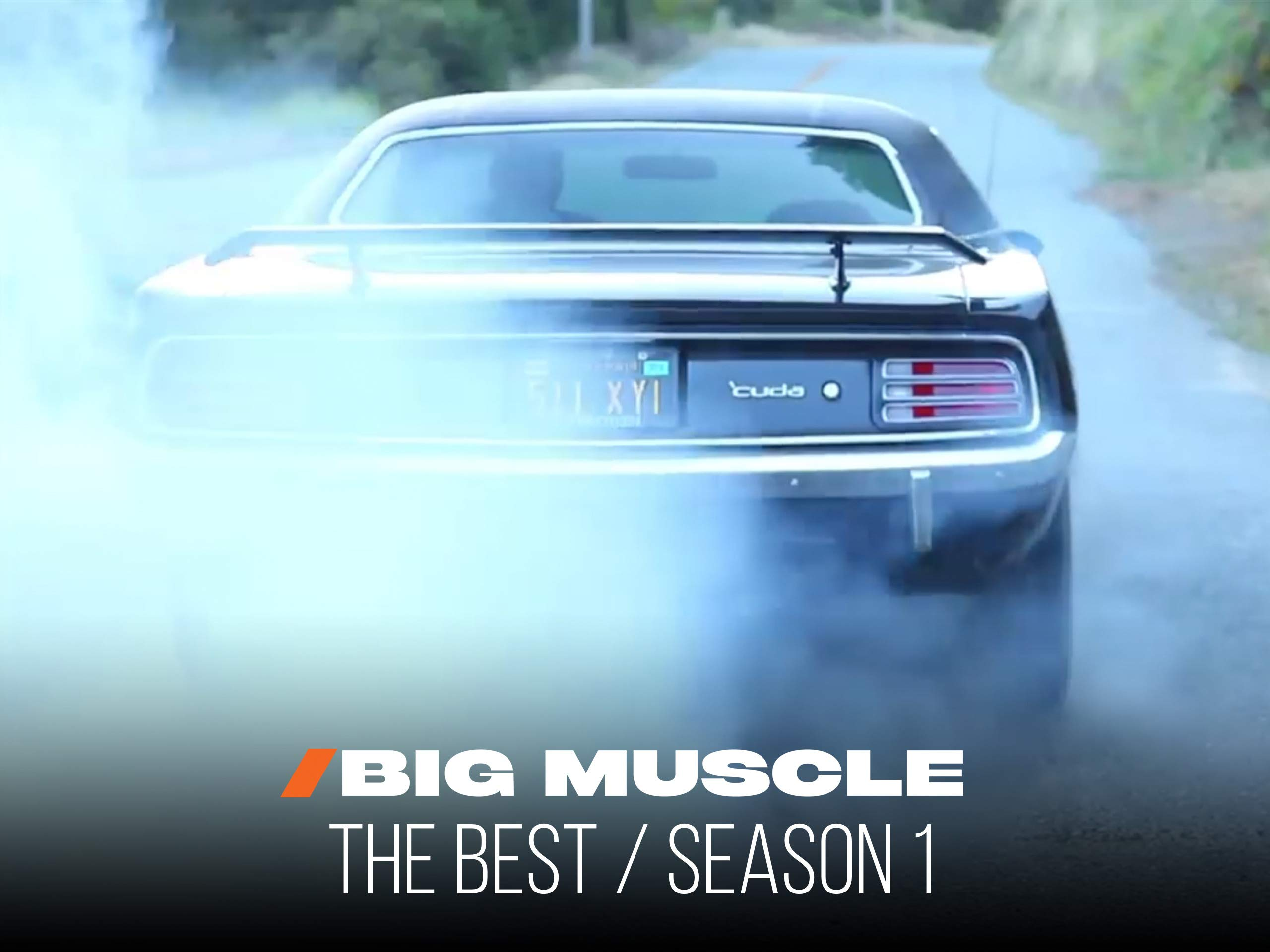 Big Muscle: The Best of