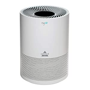 Bissell, 2780A MyAir Personal Air Purifier for Home, Allergies and Pet Hair (Renewed)