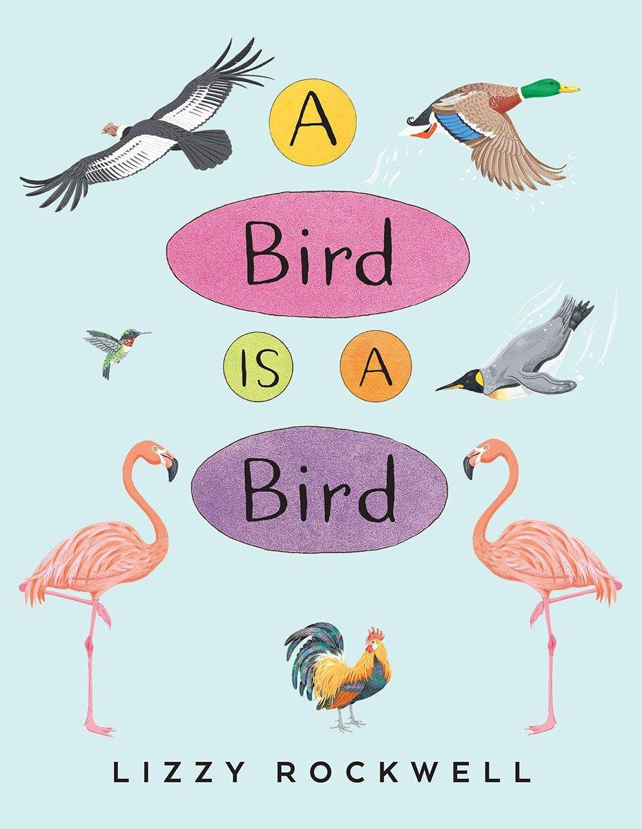 A Bird Is a Bird pdf