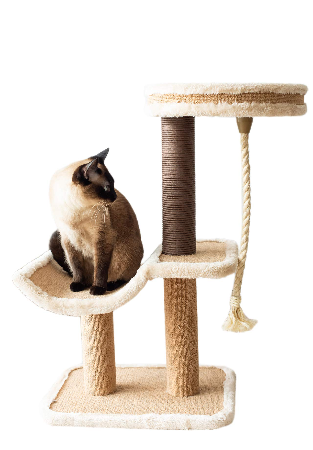 Catry, cat Tree Cradle Bed with Natural Sisal Scratching Posts and Teasing Rope for Kitten by Catry