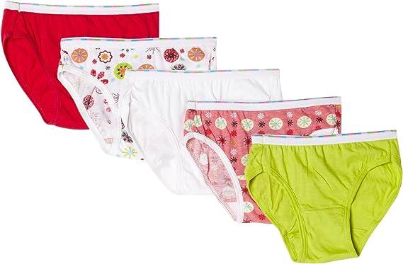 Hanes Clasic Panties