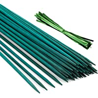 Pllieay 30 Varillas de bambú Verde de 12 Pulgadas con 60 Lazos metálicos Verdes, estaca de Planta Verde, púas Florales…