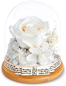 KING DOO Handmade Preserved Real Rose, Upscale Flowers, Eternal Life Never Withered Roses Artificial Flowers for Valentine's Day, Birthday, Anniversary, Christmas (White)