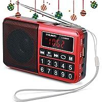 PRUNUS Radio Portable Rechargeable FM/AM(MW)/SW USB Micro-SD et Lecteur Mp3 intégré. Clavier du Tableau de Bord doté de Grands Boutons très lisibles. (sans la Fonction de mémorisation Manuelle)