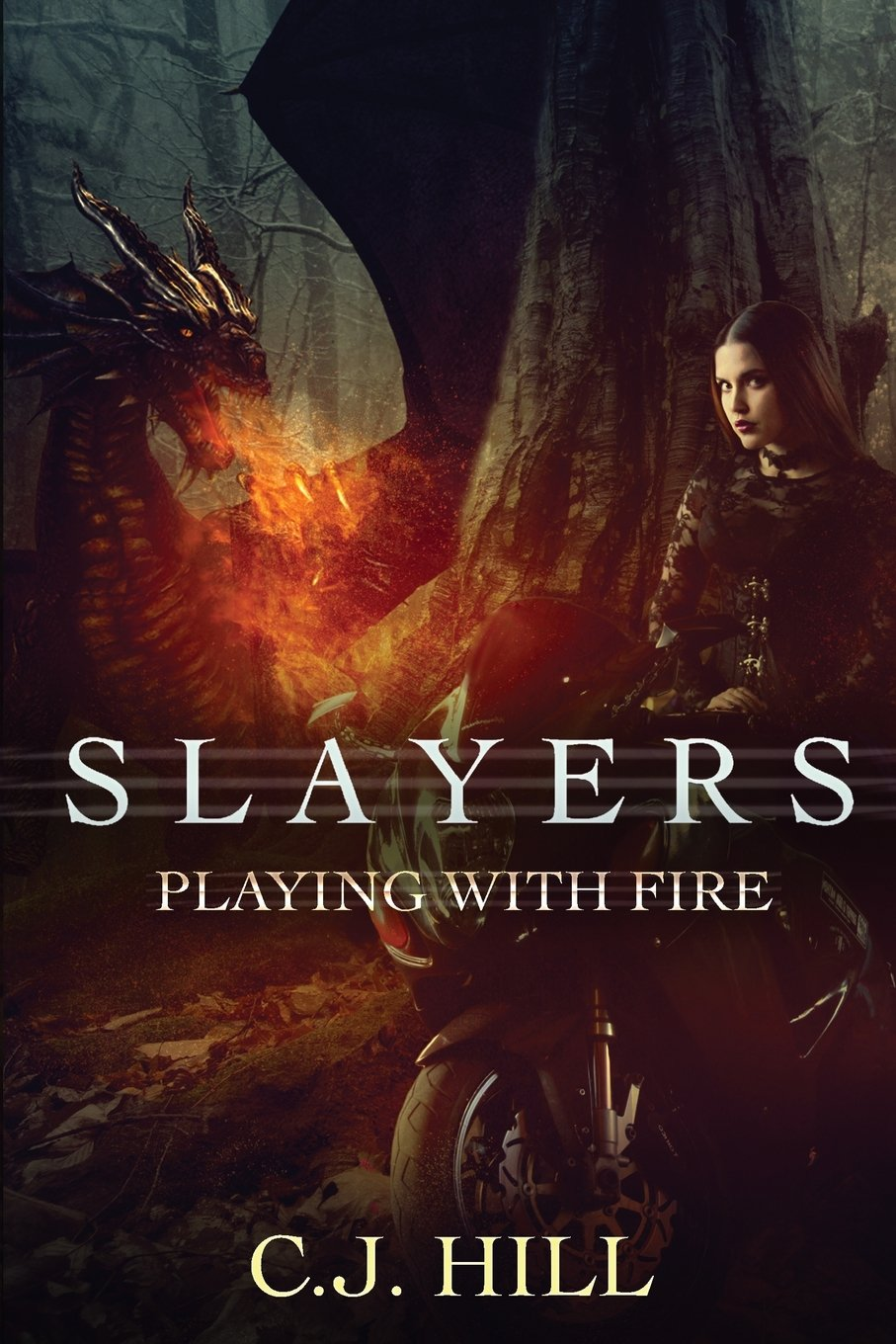 Slayers Playing Fire C J Hill product image