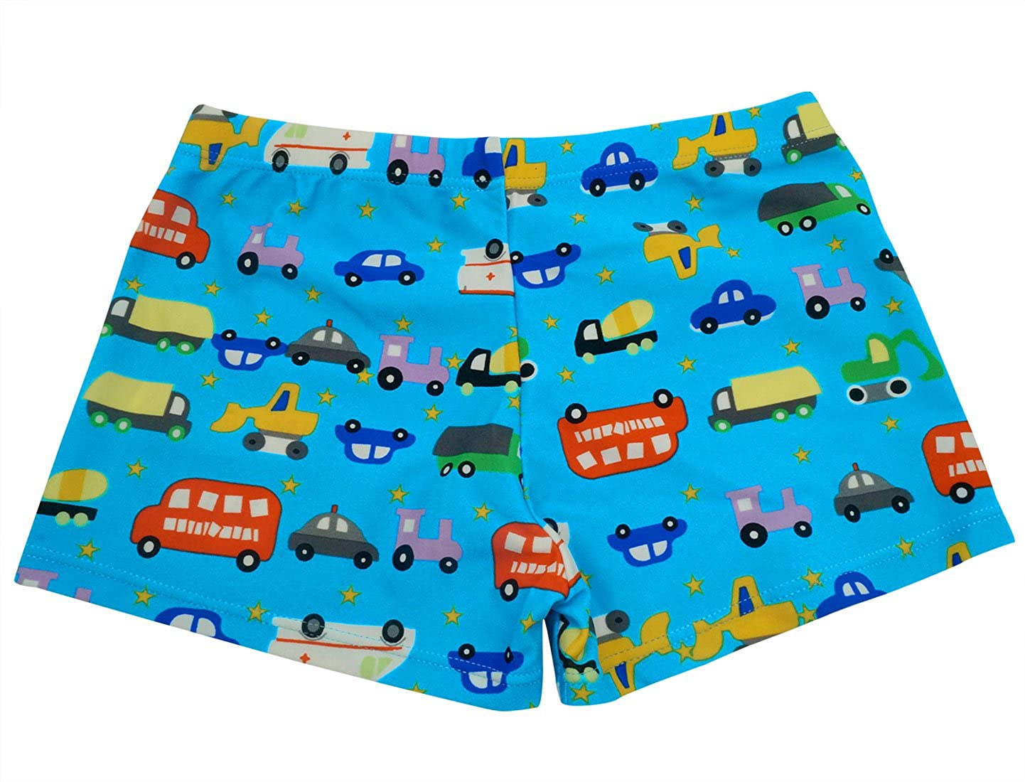 Aivtalk Boys Swim Trunks Dinosaur Boxer Briefs Bathing Suit Swimming Underwear