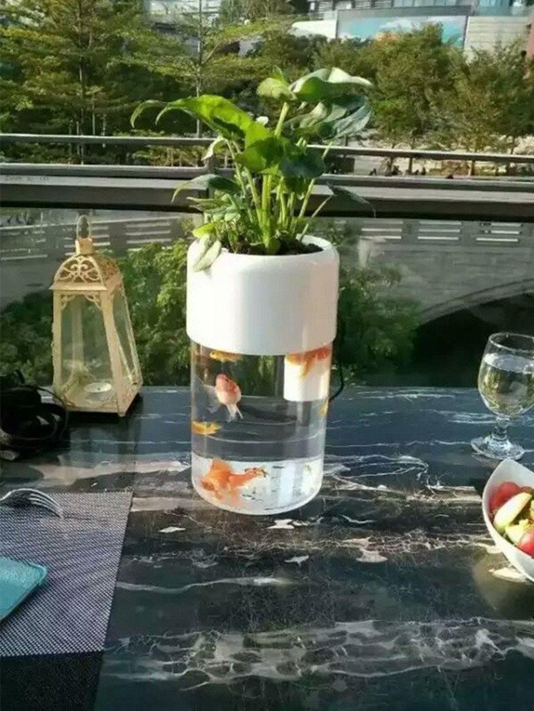 Self Cleaning Fish Tank Garden Smart Acrylic Aquaponics Aquariumgoldfish Bowl Self Cleaning Fish