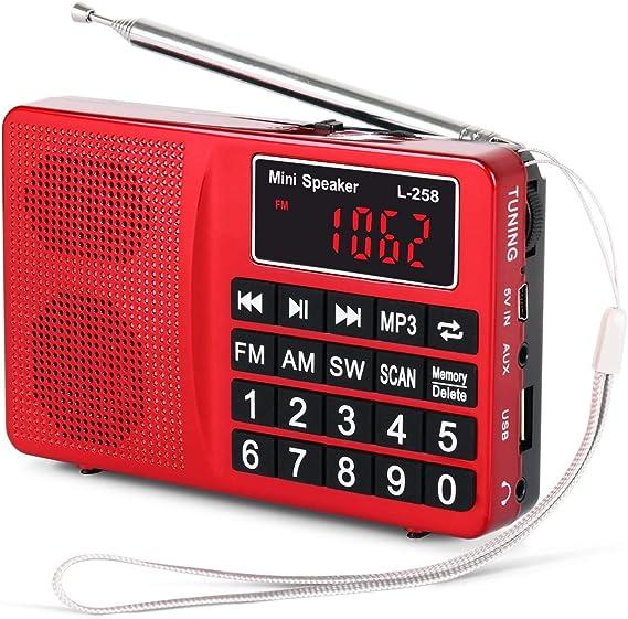 PRUNUS L-258SW Radio portatile SW/FM/Am(MW)/ SD/TF/USB(0-64 GB) MP3 con altoparlante(Ojo: No se Puede memorizar Las emisoras manualmente).