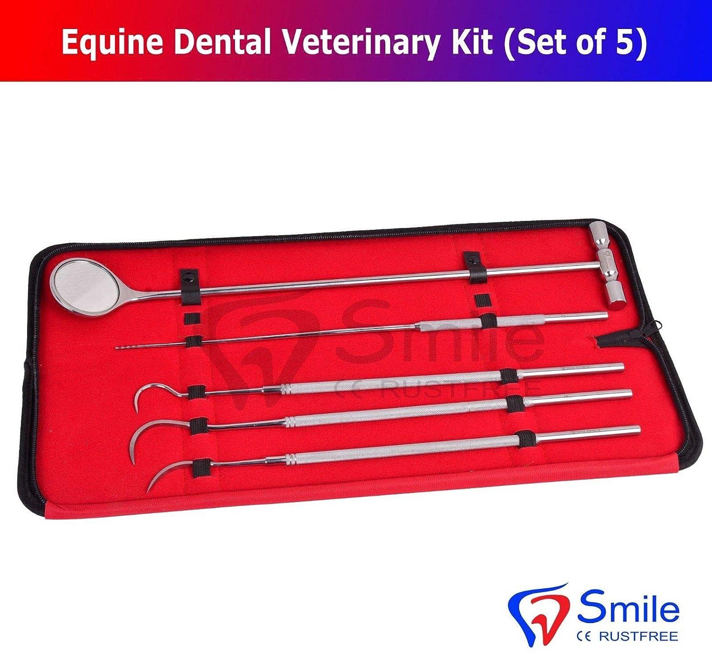 Smile England equine equine equine Dental Mirror Scaler sonda Explorer veterinario kit set UK 64664a