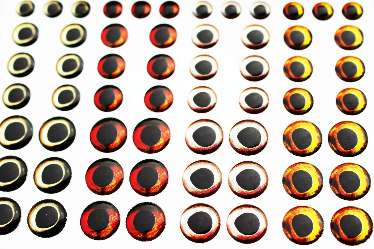 Tigofly 72 pcs Mixed 4 Colors 6//8//10mm 4D Fish Eyes Realistic Holographic Fly Fishing Lures Artificial Eyes Fly Tying Materials