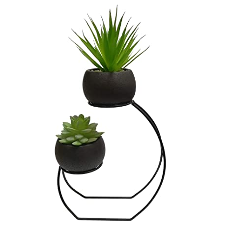 Taiyue Black Round Cement Succulent Planter Cactus Pot With Black Metal Iron Display Stand by Taiyue