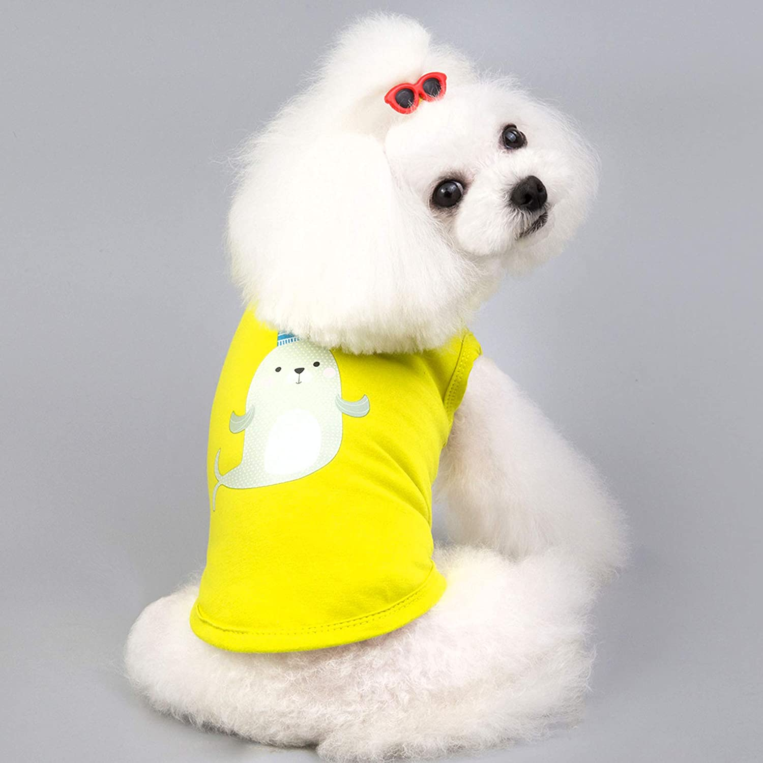 Dog Shirts,Pet Dog T Shirt Cloth Puppy Dog Cat Vest Doggie Clothing Apparel Costume Female Male for Small Dog-2pcs M:Back Length:25cm,Chest size:35cm, Tiger