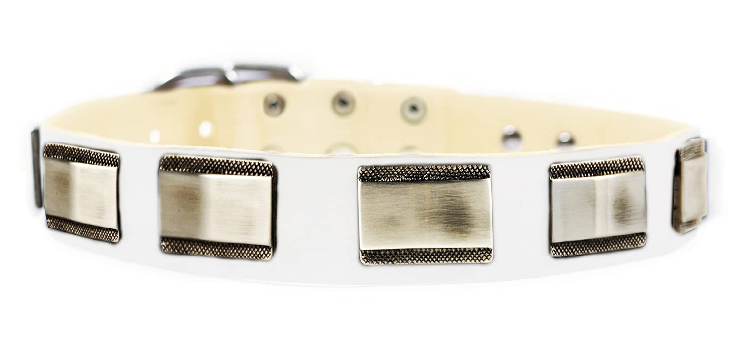 Dean & Tyler  White Light Leather Dog Collar with Beautiful Nickel Plates, 30 by 1-1 2-Inch, Fits Neck 28 to 32-Inch, White