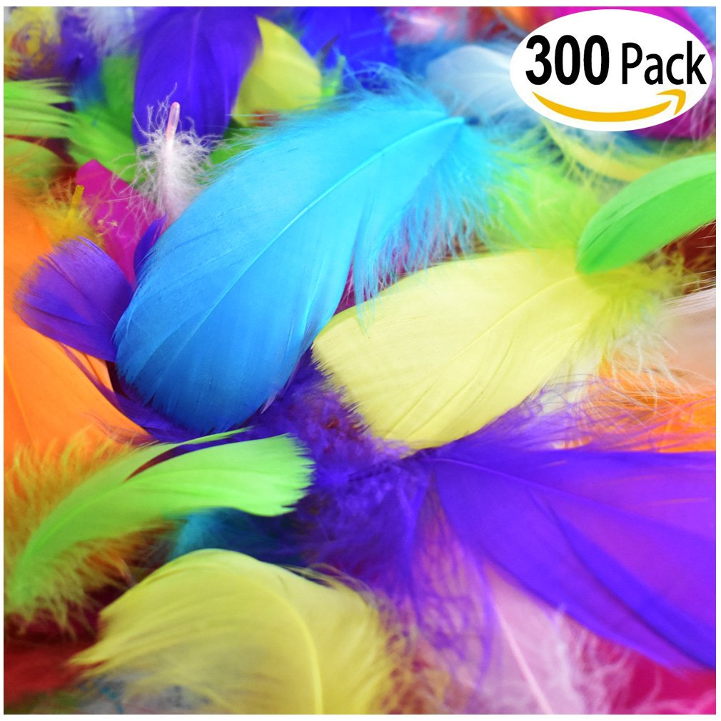 300Pcs Decor Feathers, Colorful Feathers for DIY Craft Wedding Home Party Decorations.