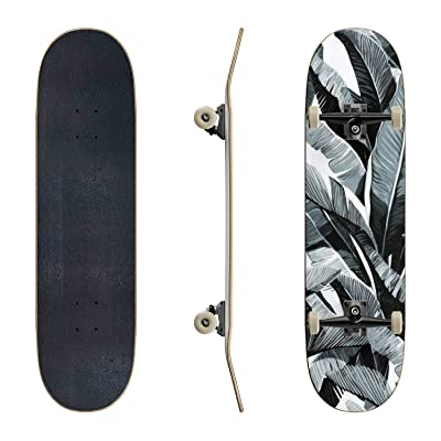 EFTOWEL Skateboards Banana Leaves Seamless Tropical Pattern Rainforest Stock Classic Concave Skateboard Cool Stuff Teen Gifts Longboard Extreme Sports for Beginners and Professionals : Sports & Outdoors