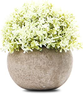 Epartswide Mini Plastic Artificial Plants Grass with Pot,Plants Topiary Shrubs Fake Plants,Artificial Faux for Indoor Decorations
