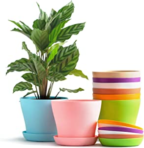 "TRUEDAYS 4"" Mini Plastic Flower Seedlings Nursery Pot/Planter/Flower Pot with Pallet 8 Colors,All"