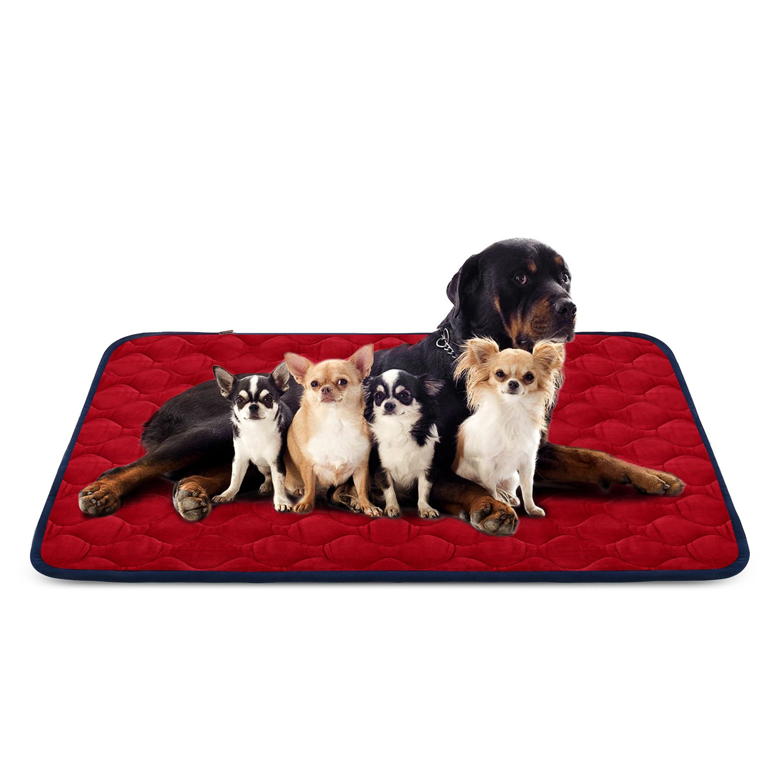 color 4 55 INHero Dog Large Dog Bed Mat 55 Inch Crate Pad Anti Slip Mattress Washable for Pets Sleeping (bluee XXL)