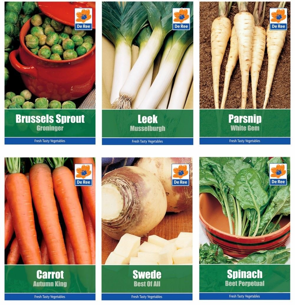 6 PACKS of WINTER VEGETABLE SEEDS - Carrot, Brussel Sprout, Leek, Parsnip, Spinach, Swede De Ree