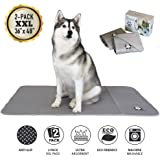 """Trendy Den Creations - Washable Pee Pads for Dogs - Reusable Puppy Training Pads - 36""""X48"""" 2 Pack Dog Training Pads Extra X-Large - Dog or Cat Bed - Whelping Pads Dog Kennel or Crate Puppy Pee Pads"""