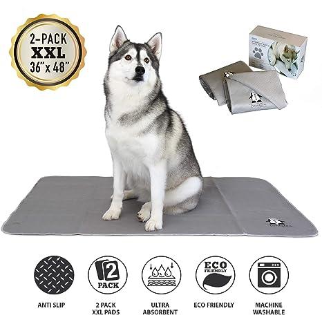 Almohadillas lavables para perros | 2 paquetes de XXL (36 x 48 ...