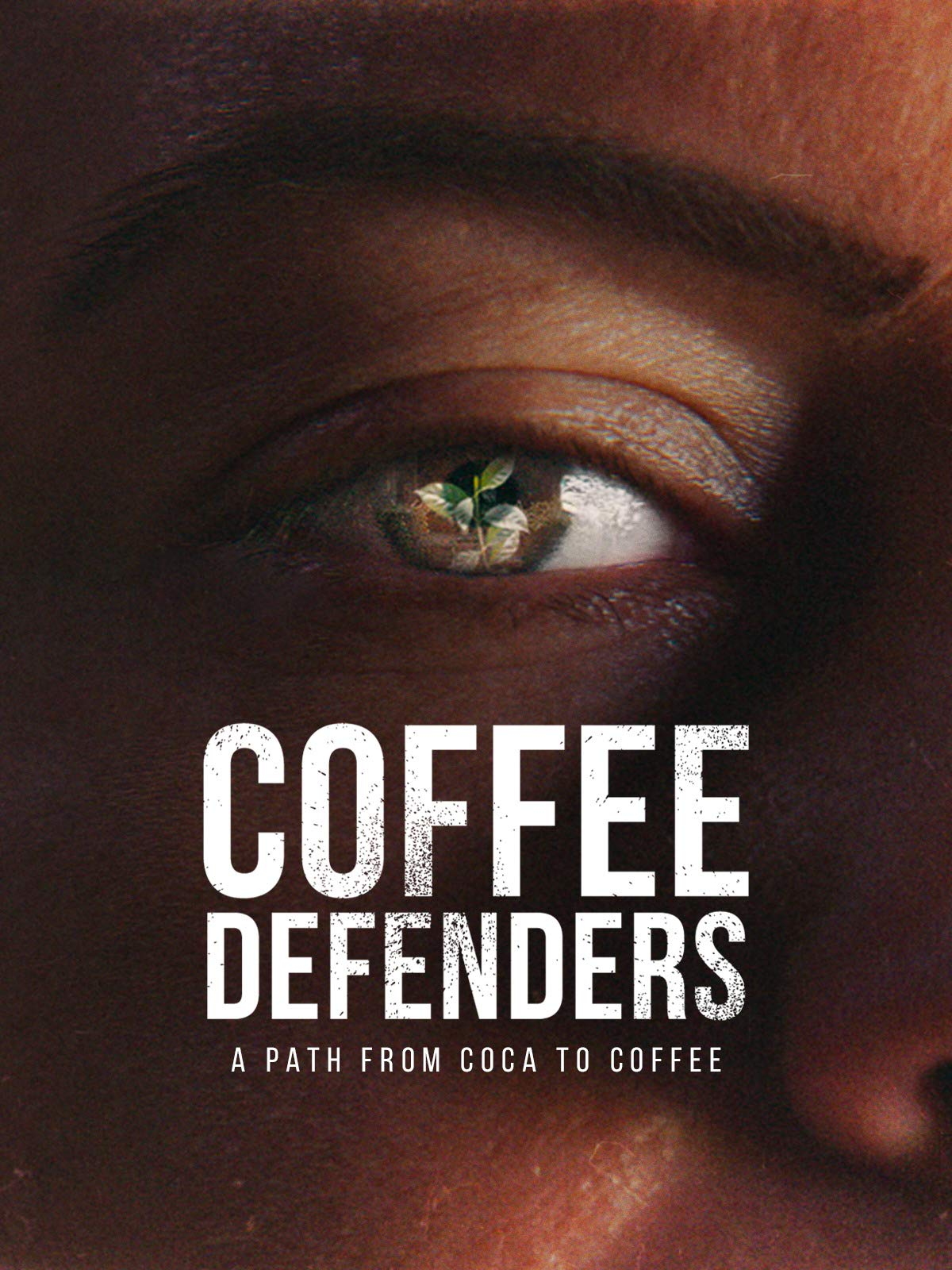 Coffee Defenders: a Path from Coca to Coffee