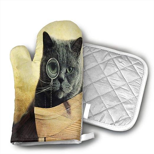 NoveltyGloves Cenicienta guantes de horno, profesional resistente ...