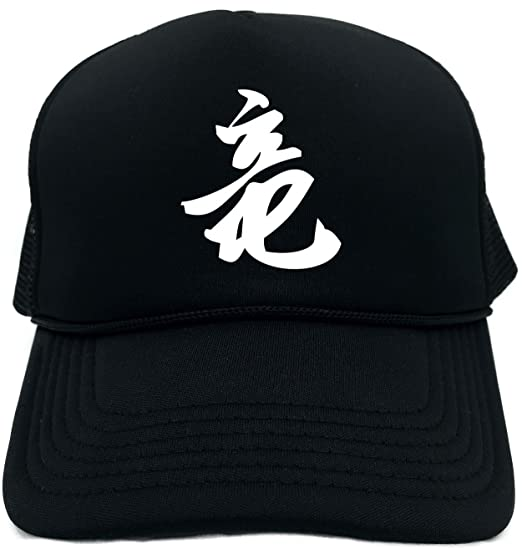 e45d7a5274f Amazon.com  Funny Trucker Hat (DRAGON (Chinese Character Writing) ) Unisex  Adult Foam Cap  Clothing
