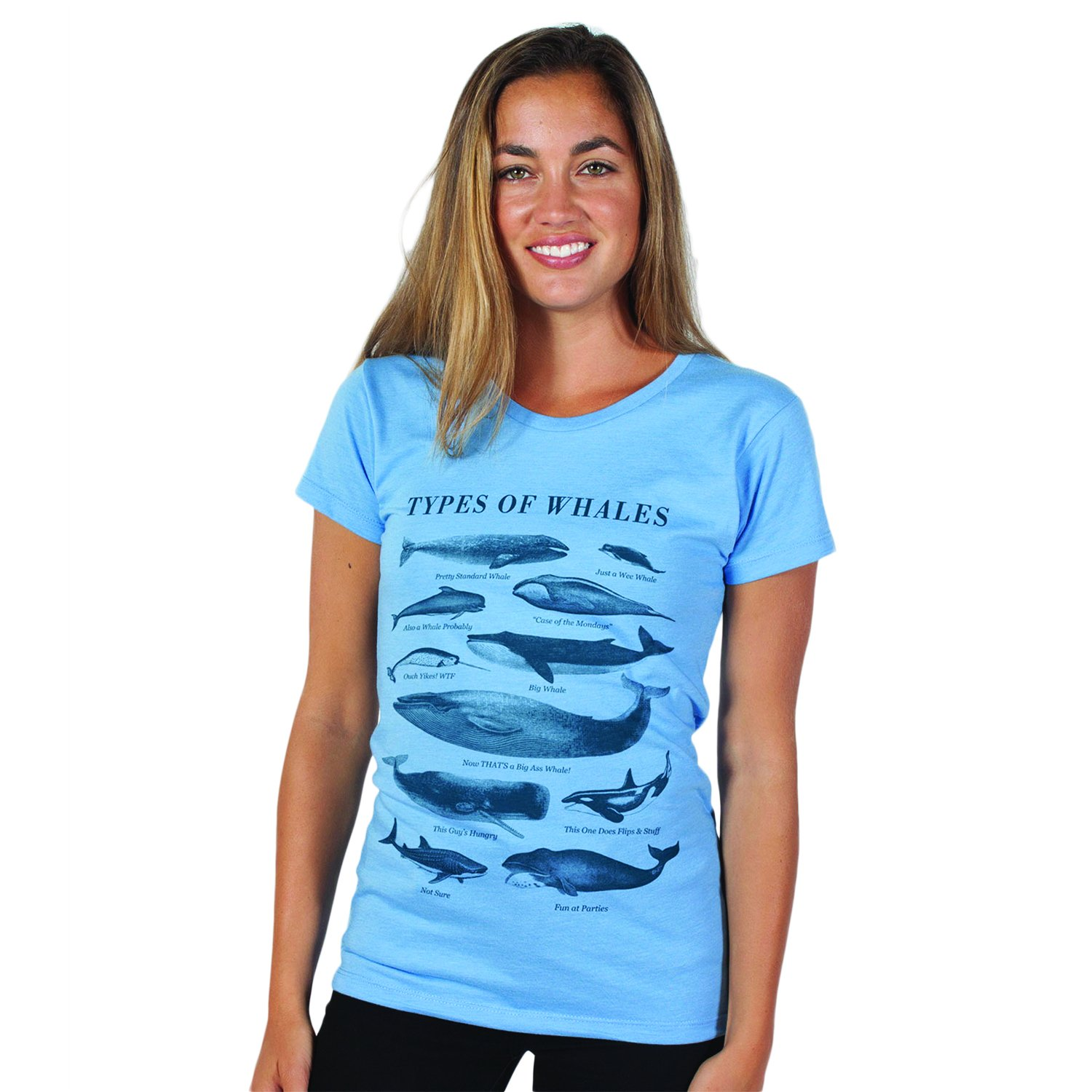 f3f0d9e4d Amazon.com: Headline Shirts Types of Whales Funny Graphic Screen Printed  Crewneck T-Shirt for Women: Clothing