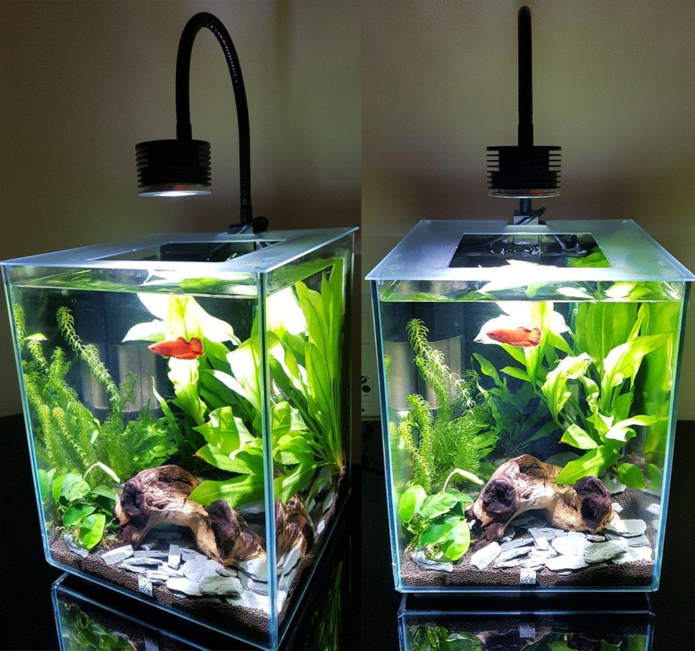 Lumini - Lámpara led para acuarios, programable, 4 canales, para acuarios de agua salada, arrecife de coral y agua dulce: Amazon.es: Iluminación