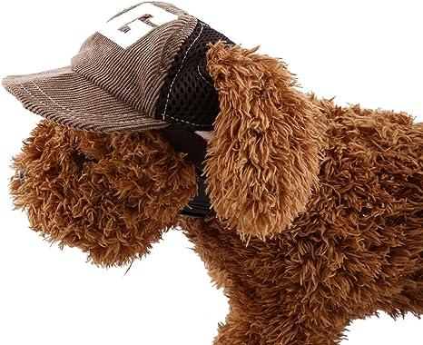Gorra con visera para perro, gato y otros animales domésticos ...