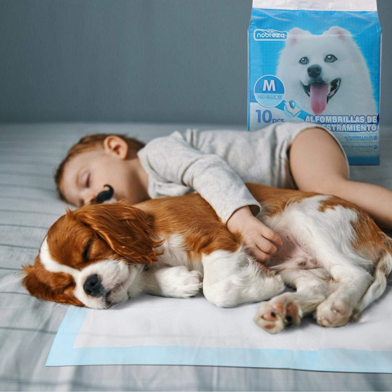 Ultraabsorbente 60cm*60cm. 100 x Empapadores Perros Alfombrilla higi/énica de Entrenamiento para Perros Nobleza