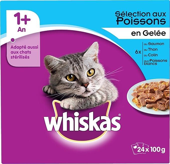 Whiskas - Alimento humedo para gatos, en gelatina (At?n, Colin ...
