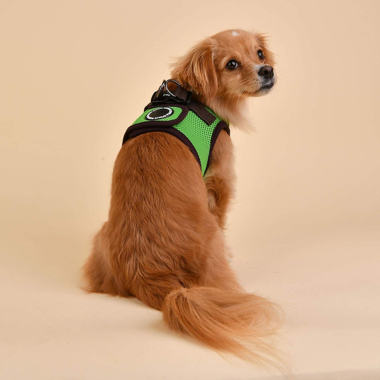 Green S Soft Vest Harness B II