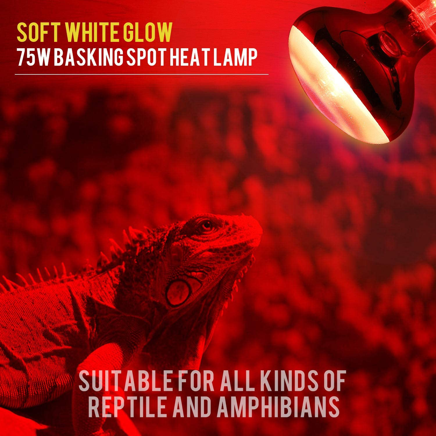 Lizard Tortoise Spider Snake Chameleon 2 Pack FIVEAGE 75W Gilded Red Pet Light Heating Infrared Bulb UVA Spot Heat Lamp for Reptile and Amphibian Use