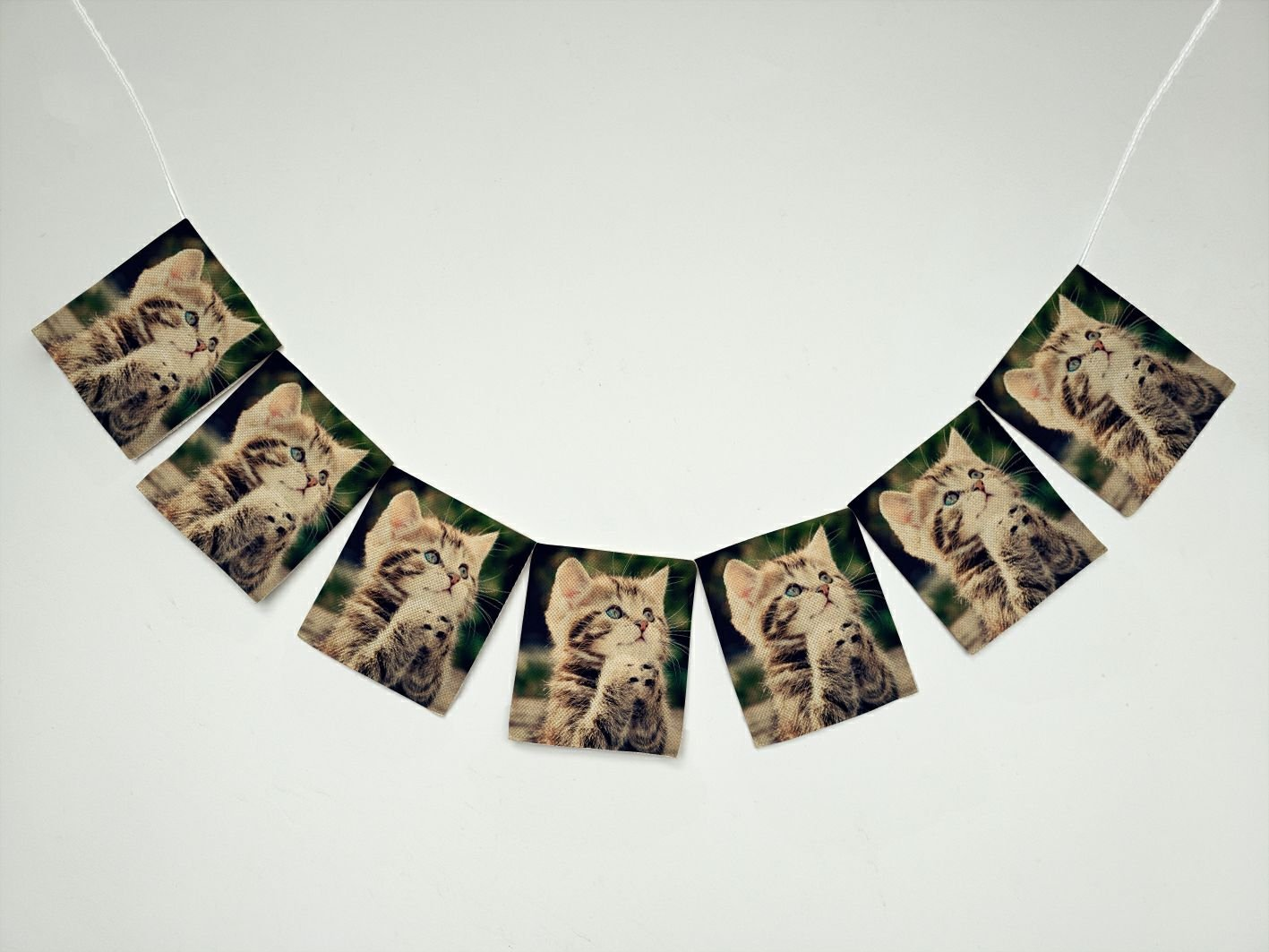 Animals Kitten Cat Banner Bunting Garland Flag Sign for Home Family Party Decoration