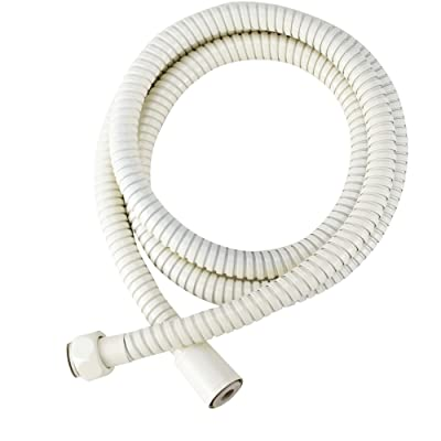 Dura Faucet DF-SA200-BQ RV 60-inch Stainless Steel Shower Hose (Bisque Parchment): Automotive