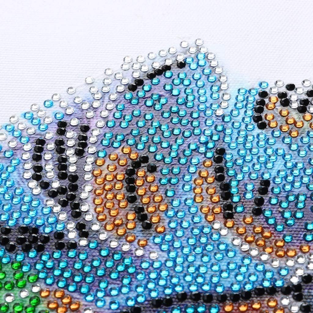 Peinture Diamant 5D Enfant Chat Papillon DIY DAY8 Broderie de Diamants Point de Croix en R/ésine D/écoration de Maison Salon Chambre Diamond Painting Kits D/écoration de No/ël Cadeau Pas Cher