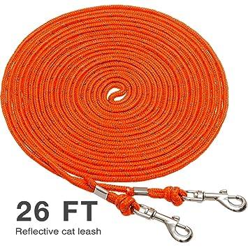 Amazon.com: OFPUPPY - Cuerda reflectante para gato y ...