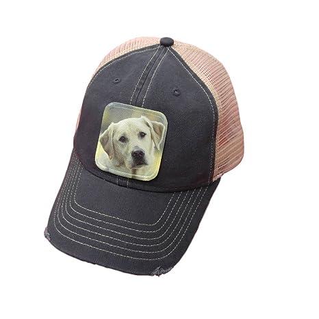 da95a521307 Amazon.com   Yellow Labrador Dog Distressed Trucker Snap Back Baseball Cap  Navy   Sports   Outdoors