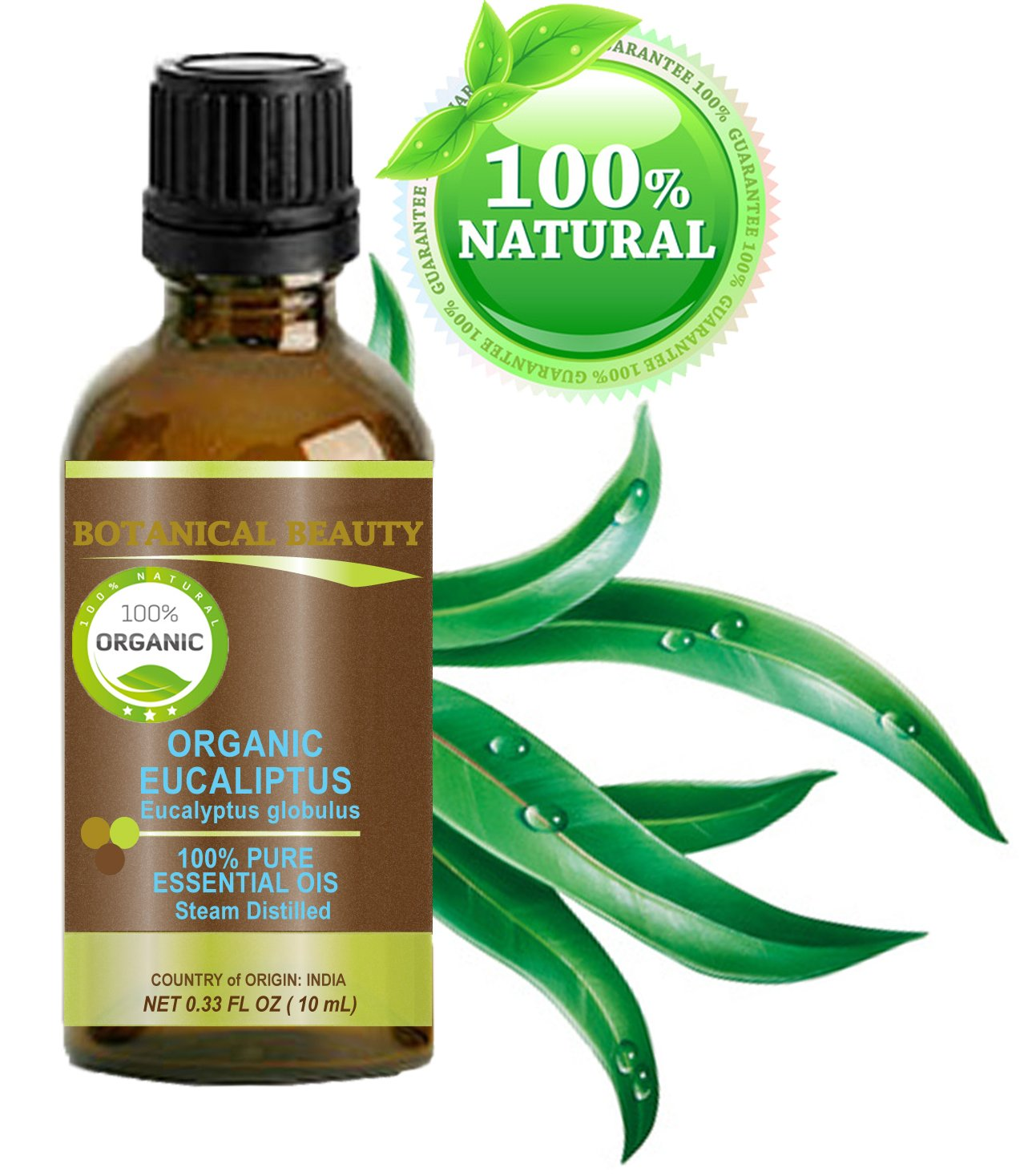 Organic EUCALYPTUS ESSENTIAL OIL, 100% Pure/Undiluted/Therapeutic Grade/Steam Distilled/Certified Organic. 0.33 oz-10 ml by Botanical Beauty