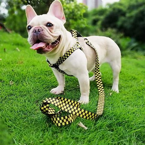 Gychee - Juego de arnés y Correa para Perros, arnés para Mascotas ...