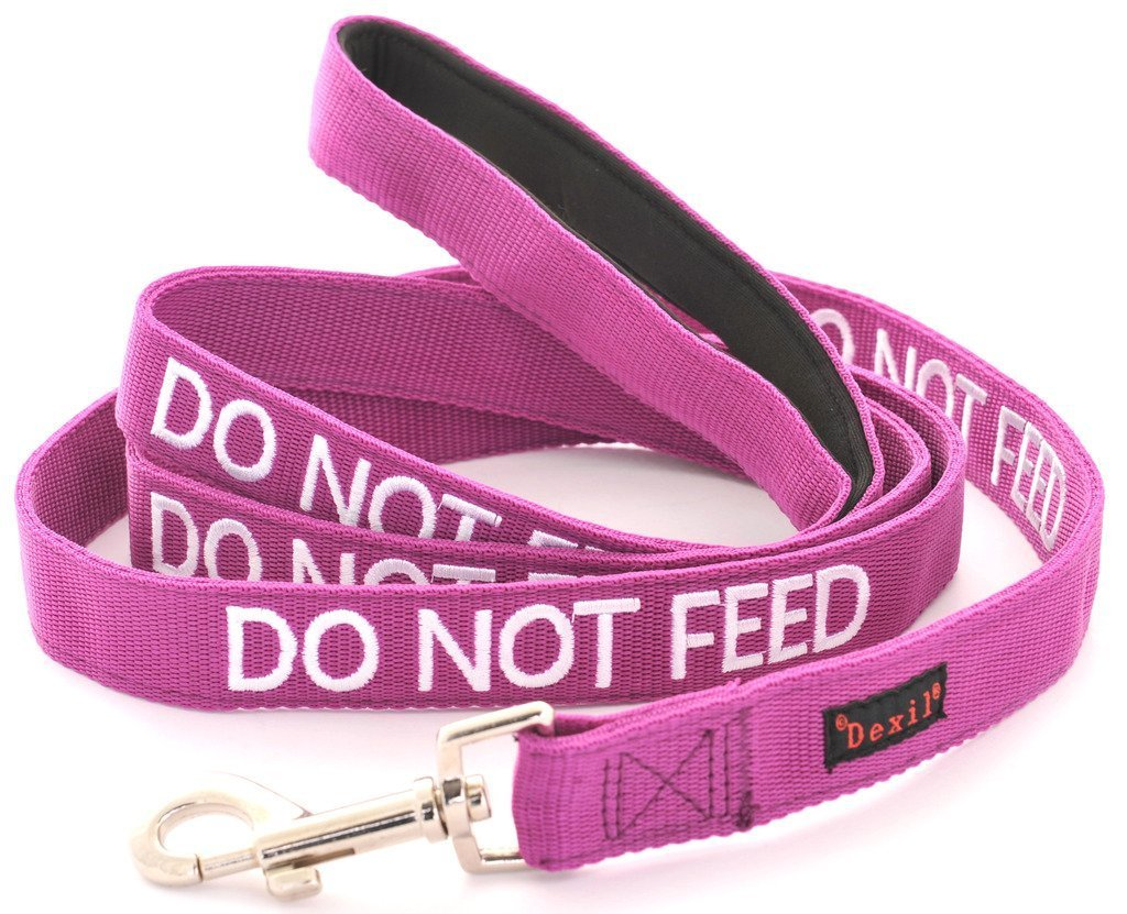DO NOT FEED Purple Color Coded 6 Foot Padded Dog Leash (May Have Allergies) PREVENTS Accidents By Warning Others of Your Dog in Advance Friendly Dog Collars