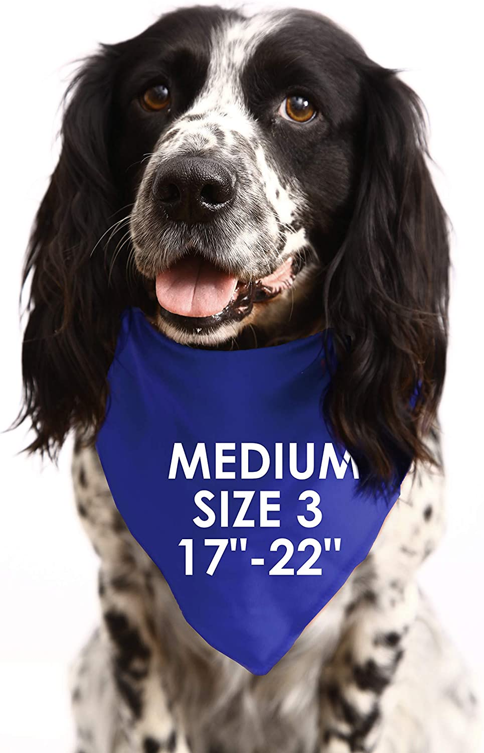 Small Dogs Shih-tzu Terriers /& Cockerpoo PERSONALISED S2 Royal Blue With Paw Print Design Any Name Dog Bandana