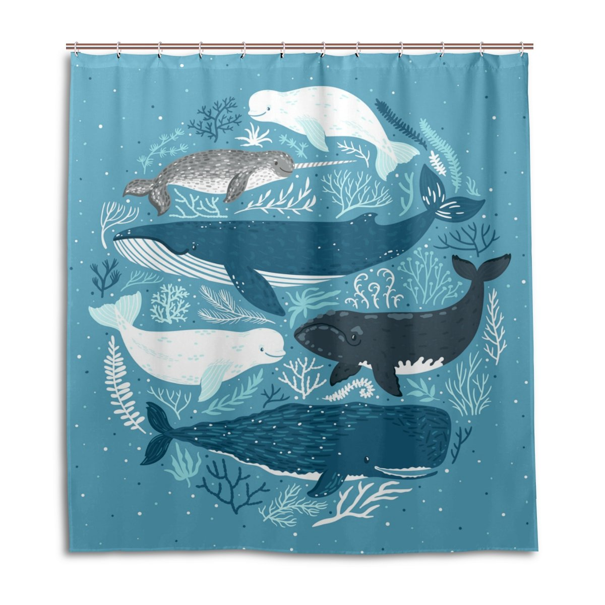 Whales Seals Dolphins Under The Sea Shower Curtain 66 X 72 inch Water Resistant Fabric Bath Curtain with Hooks for Bathroom Home Decor by Mock ST g1574657p64c44s62